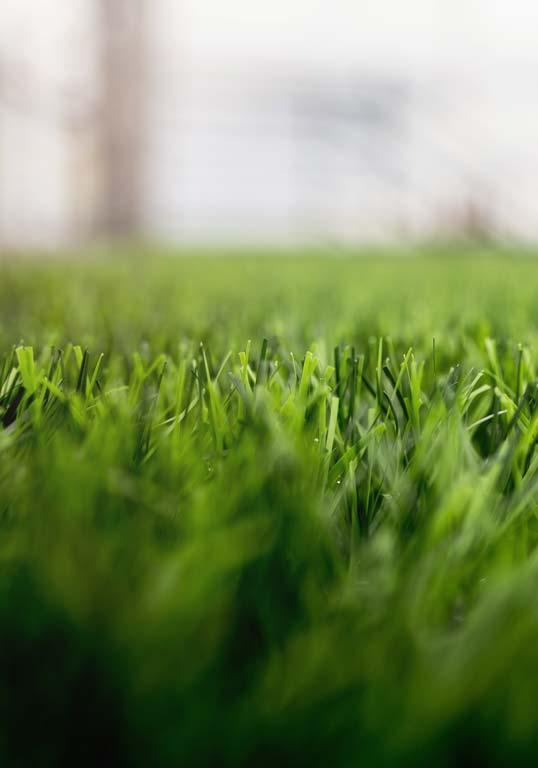 la fausse herbe a pour ambition d'imiter à la perfection la pelouse naturelle